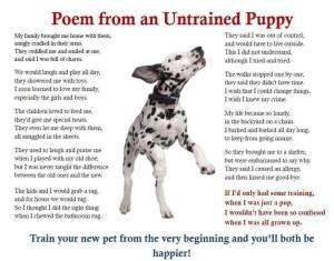 A poem from an untrained pup