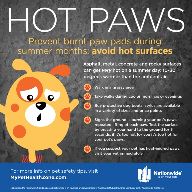 4617_SOC_Hot Paws Mini Graphic_FINAL